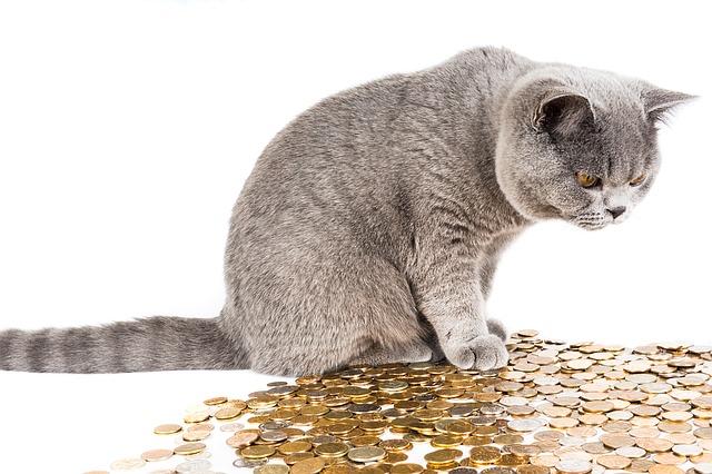 ふるさと納税 いつの年収で計算